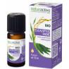 Eucalyptus Radié Huile Essentielle Bio 10 ml Naturactive