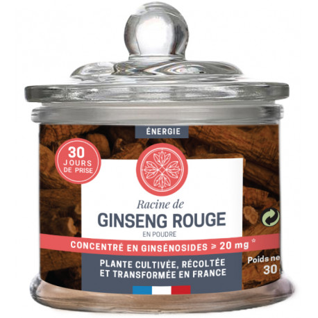 Ginseng  Rouge poudre