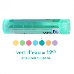 Nux vomica granules, dose Boiron 3CH, 4CH, 5CH, 6CH, 7CH, 9CH, 12CH, 15CH, 18CH, 20CH, 24CH, 30CH , 6DH, 30 DH