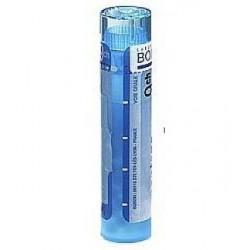 Zincum metallicum dose, granules 4 CH, 5 CH, 7CH, 9 CH, 12 CH, 15 CH, 30 CH Boiron