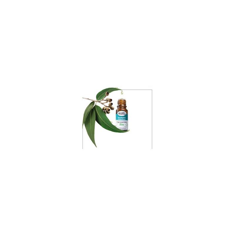 Coupe faim pack conseil aux huiles essentielles bio - Huile essentielle pamplemousse coupe faim ...