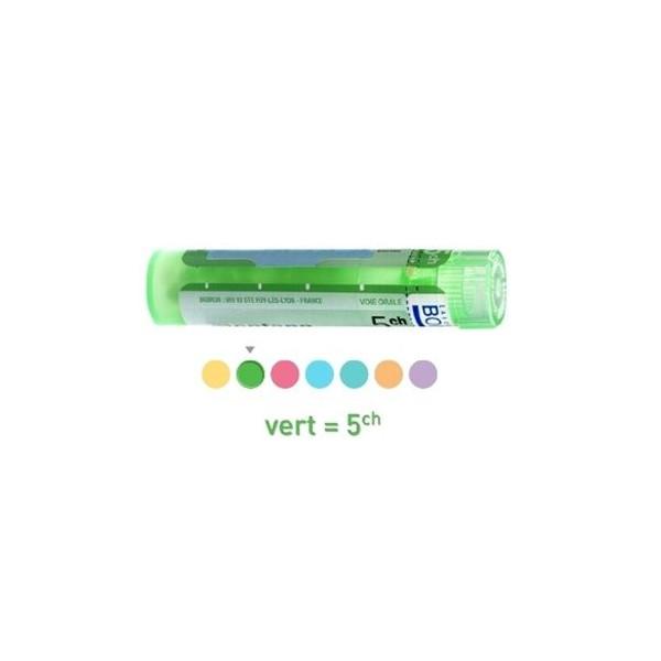 hydrastis canadensis 15 ch granules tube guide