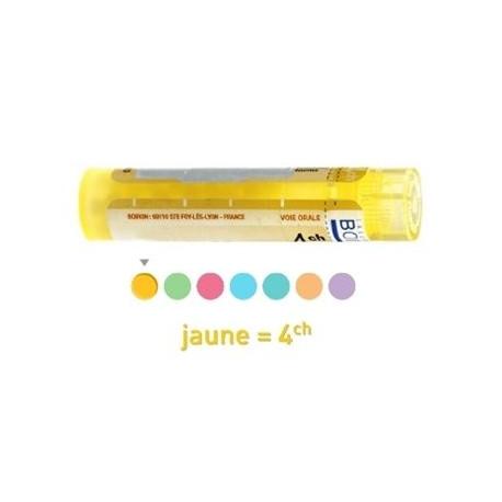 Serum anticolibacillaire dose, granules, ampoules, gouttes Boiron 4CH, 5CH, 7CH, 9CH, 15 CH, 30 CH
