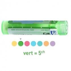 Kreosotum dose, granules,  Boiron 4CH, 5CH,  7CH, 9CH, 12CH, 15CH, 30CH, 6DH,