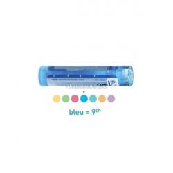 Glonoinum dose, granules Boiron 4CH, 5CH, 7CH, 9CH, 12CH, 15CH, 30CH