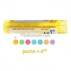 Disci lumbales dose, granules, gouttes, ampoules Boiron 4CH, 5CH, 7CH, 9CH, 12CH, 15CH, 30CH, 8DH