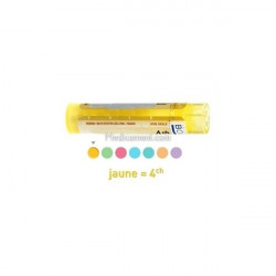Anacardium Occidentale dose, granules, Boiron 5CH, 7CH, 9CH, 15CH, 30CH