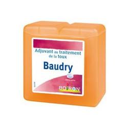 Pâtes Baudry Boiron