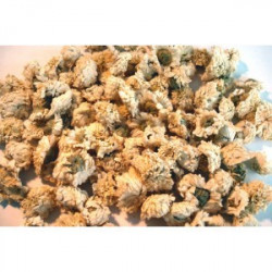 Camomille romaine fleurs  vrac ADP
