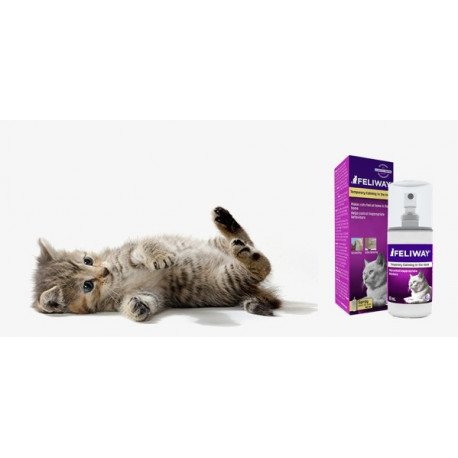 Feliway Spray pour chat 60 ml