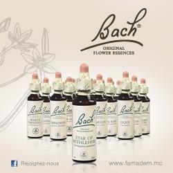 Envie de nuits tranquilles Pack Fleur de Bach Conseil