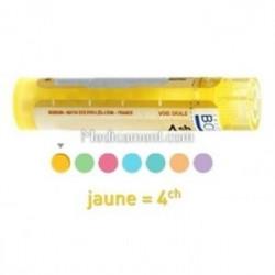 Disci cervicales dose, granules, gouttes, ampoules Boiron 4CH, 5CH, 7CH, 9CH, 12CH, 15CH, 30CH, 8DH