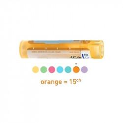 Dactylis Glomerata 15CH dose, granules Boiron
