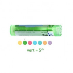 Jaspe vert granules, ampoules Boiron 5CH, 8DH