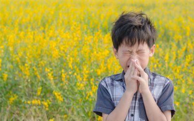 Au printemps, attention aux allergies respiratoires